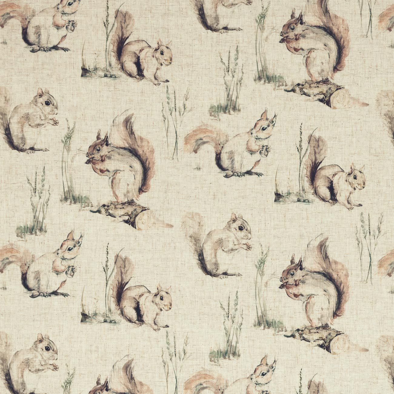 squirrel fabric